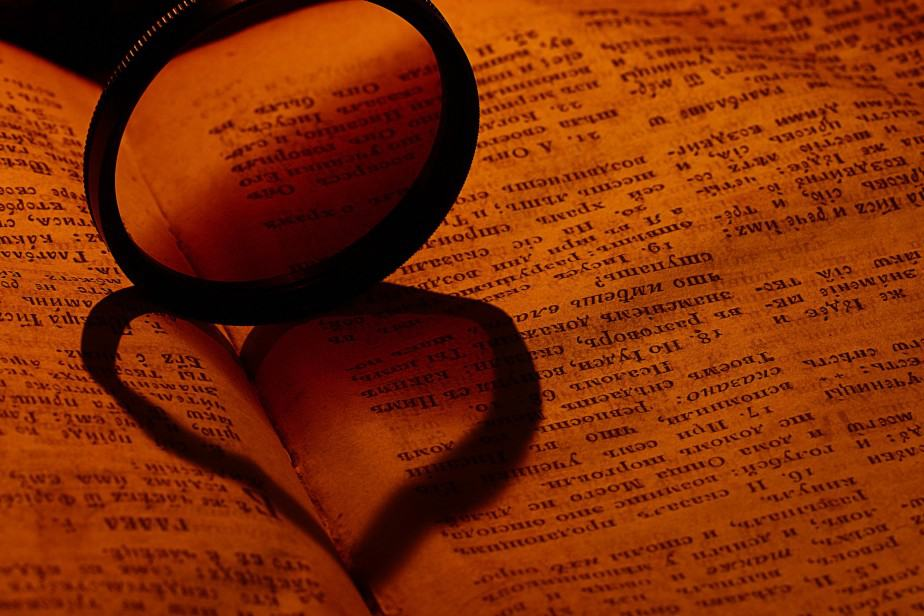 Essays about knowledge in the information age